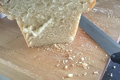 Sandwich-Toast aus Dinkel (Bild)