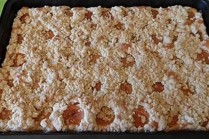 Marillenkuchen mit Streusel 2