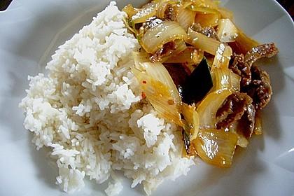 Rindfleisch mit Zwiebeln 16