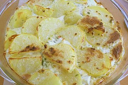 Schafskäse - Kartoffel Auflauf 13