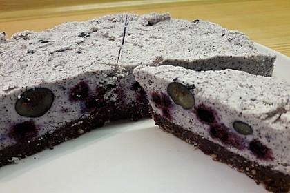 Roher Kokos-Heidelbeer-Kuchen