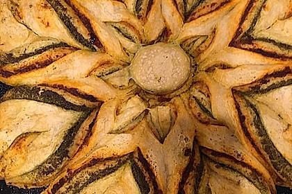 Pesto-Blume 30