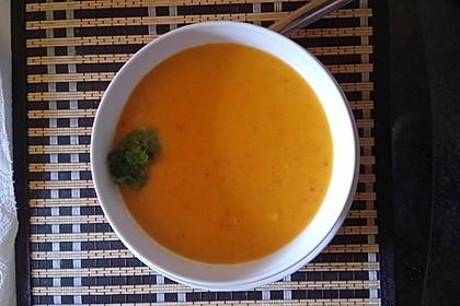Vegetarische Apfel-Gemüse-Suppe (Bild)