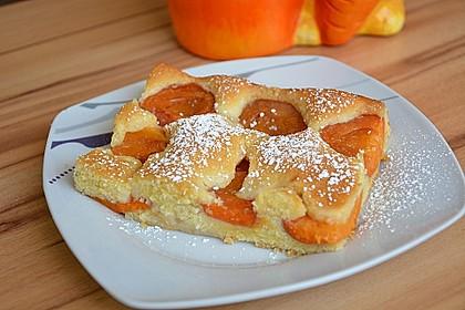 Vanille-Marillenkuchen 1