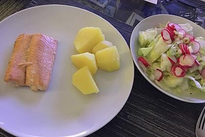 Frühlingshafter Kopfsalat mit Radieschen 5