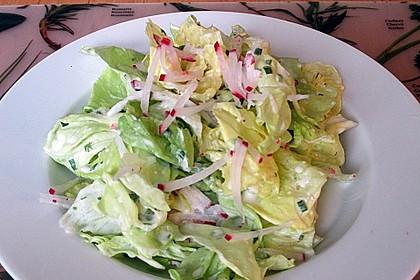 Frühlingshafter Kopfsalat mit Radieschen 15