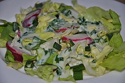 Frühlingshafter Kopfsalat mit Radieschen 17