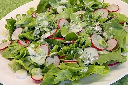 Frühlingshafter Kopfsalat mit Radieschen 2