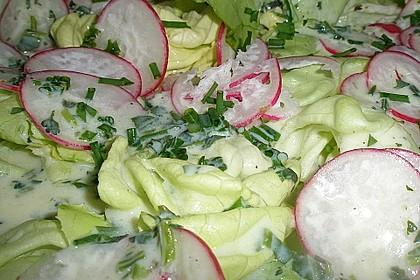 Frühlingshafter Kopfsalat mit Radieschen 21