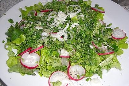 Frühlingshafter Kopfsalat mit Radieschen 18