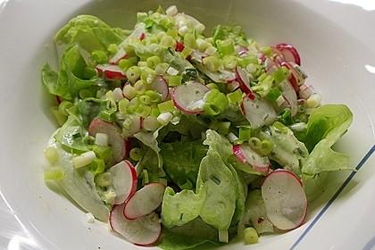 Frühlingshafter Kopfsalat mit Radieschen 4