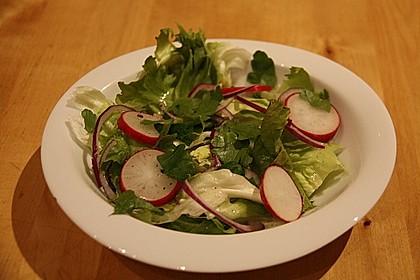 Frühlingshafter Kopfsalat mit Radieschen 13