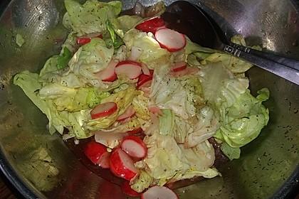Frühlingshafter Kopfsalat mit Radieschen 19