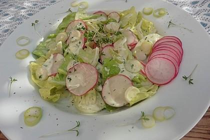 Frühlingshafter Kopfsalat mit Radieschen 14