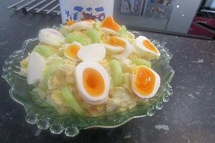 Kartoffel-Gurkensalat nach Omas Art 2