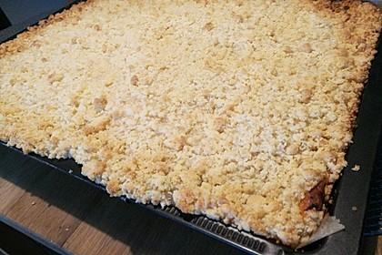 Streusel Apfel Blechkuchen 20