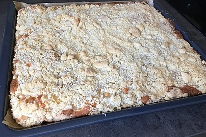 Streusel Apfel Blechkuchen 16
