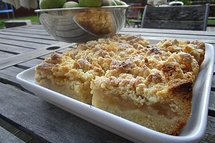 Streusel Apfel Blechkuchen 18