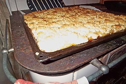 Streusel Apfel Blechkuchen 22