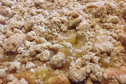 Streusel Apfel Blechkuchen 6