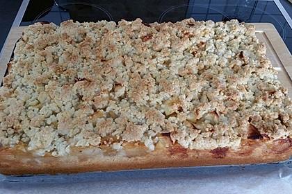 Streusel Apfel Blechkuchen 11