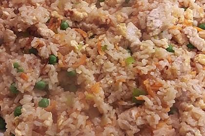 Gebratener Reis 14