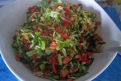Arabischer Salat mit Minze Zitronendressing