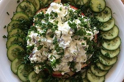 Gurken-Carpaccio mit körnigem Frischkäse 5