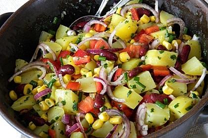 Türkischer Kartoffelsalat mit buntem Gemüsemix 1
