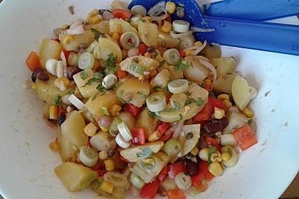 Türkischer Kartoffelsalat mit buntem Gemüsemix 9