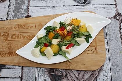 Mango-Mozzarella-Salat 1