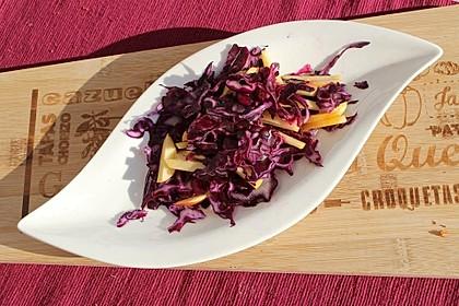 Rotkohl-Apfel-Rohkost-Salat 2
