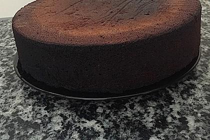 Luftiger fruchtiger Schokoladenkuchen (Bild)