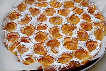 Marillenkuchen 2