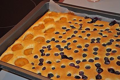 Marillenkuchen 7