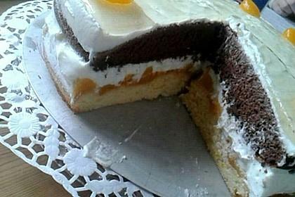 Pfirsich-Mandarinen-Kuchen