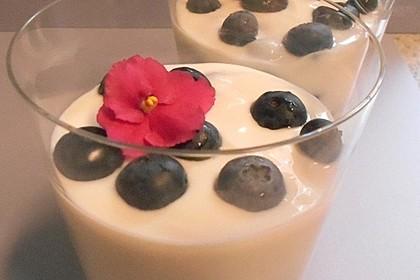 Leichtes Joghurt-Blaubeeren-Dessert (Bild)
