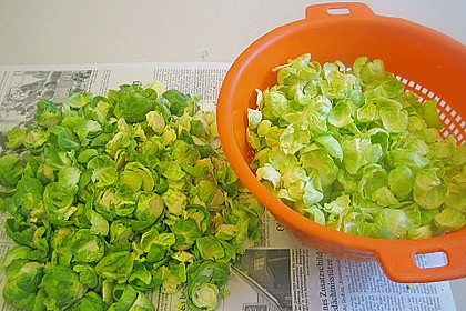 Wachtel auf Rosenkohlsalat mit Preiselbeervinaigrette 2