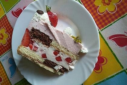 Erdbeer-Joghurt-Torte mit zweierlei Böden 1