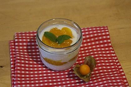 Joghurt-Maracuja Nachspeise 14