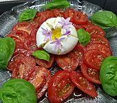 Burrata auf Tomatencarpaccio (Bild)