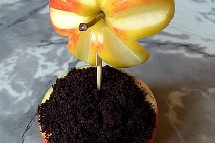 Cheesecake-Blume 1
