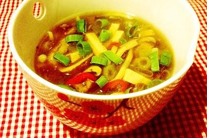 Chinesische Hot & Sour Suppe