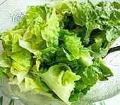 Blattsalat mit Johannisbeer-Senf-Dressing (Bild)