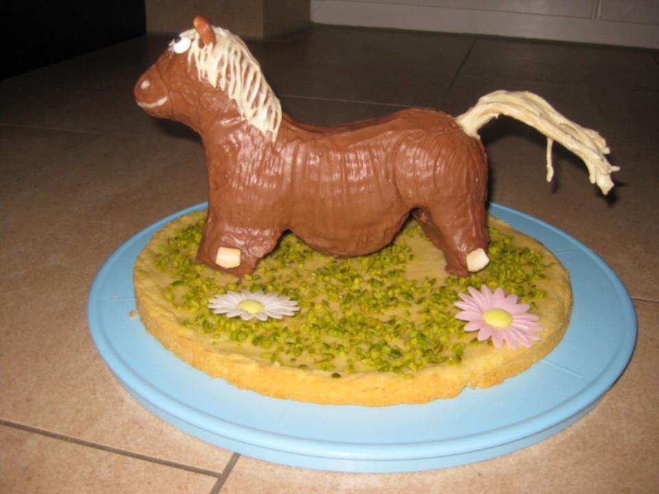 Pferd Aus Der Lammform Kuchen Fur Den Kindergeburtstag Von