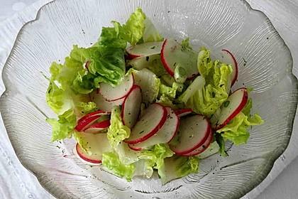Blattsalat mit Radieschen