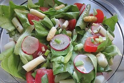 Blattsalat mit Radieschen 5