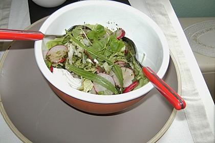 Blattsalat mit Radieschen 6