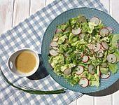 Blattsalat mit Radieschen (Bild)