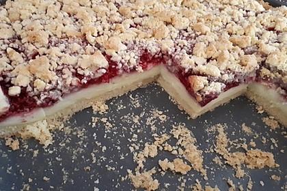 Himbeer-Pudding-Streuselkuchen 3